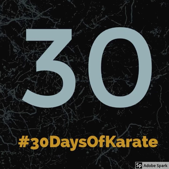 It's coming in September! Another round of #30daysofkarate  Who's going to join me this time? Still #inspired by @ando_mierzwa @karateculture and now the #kata meister, @whistlekick (great interview on Sensei Ando's podcast) #karate #kobudo #martialarts #meditation #training #innerpeace #innerstrength #journaling #awareness #blackbelt #dojo