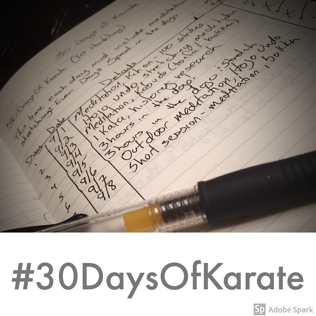 Day 8 of #30daysofkarate – not gonna lie, a long ass week and a night of insufficient sleep and I hit a wall tonight. Did 10 minutes of distracted #meditation and some #practice with the #bokken. Mentally I'm #exhausted tonight but satisfied that I was able to find enough #innerstrength to say I did *some* #karate  Not the #training I was hoping for. But, will forgive myself, go to bed, wake up ready to make up for today's lackluster challenge day. Fall down 7 times and get up 8, right? #martialarts #strength #falldown #bushido #budo #determination @jay_the_sensational @mish.mash.do @erickastengren @karateculture @ando_mierzwa @jeremylesniak