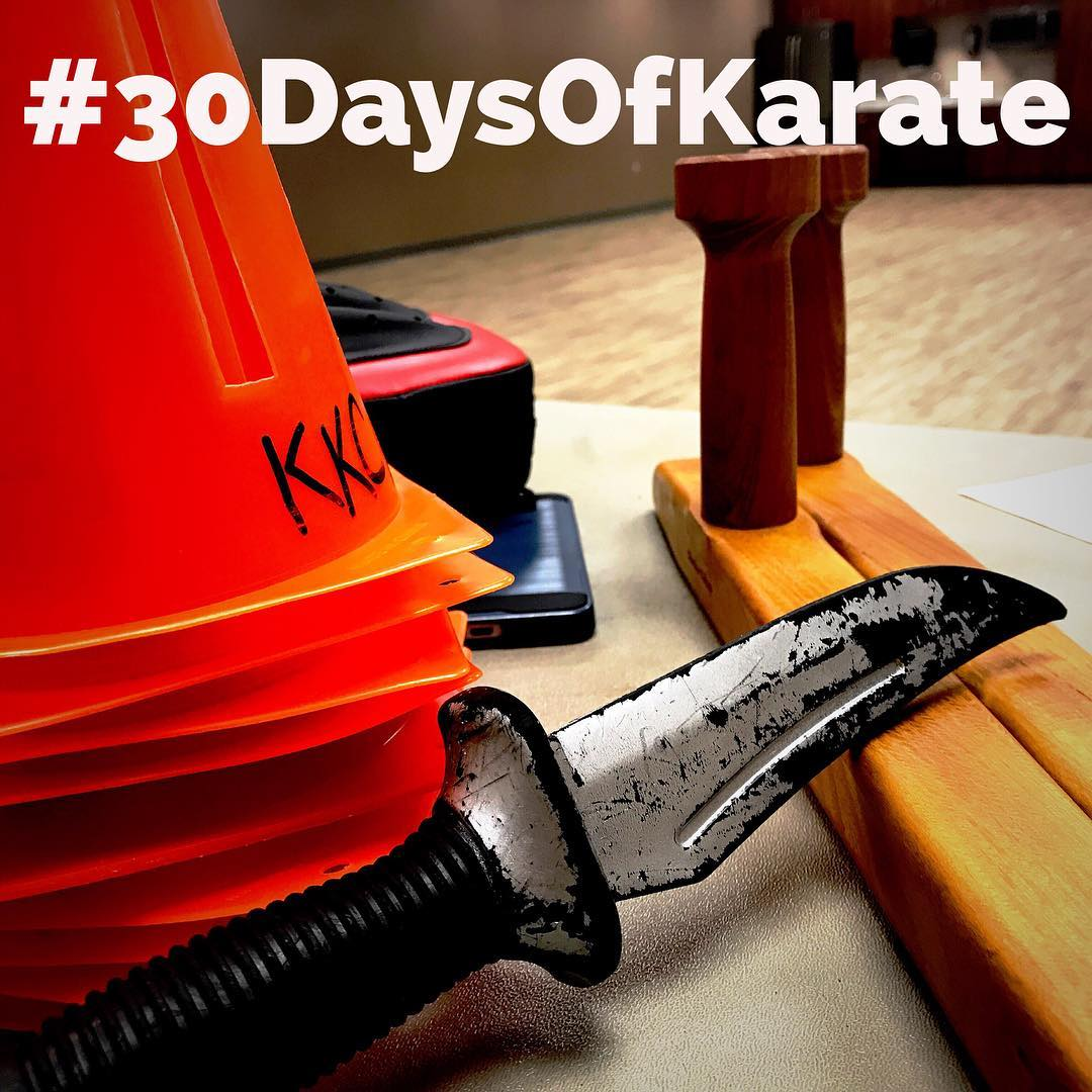 2.5 hours in the dojo tonight and that ends day 26 of #30daysofkarate Lots of fun and sweat. @erickastengren @mish.mash.do @ando_mierzwa @jay_the_sensational @karateculture #karate #kobudo #bushido #training #martialarts #workout #sweat #intense